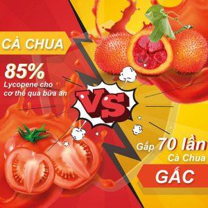THANH-PHAN-nuoc-gac-g3-myphamnuskinvn-1