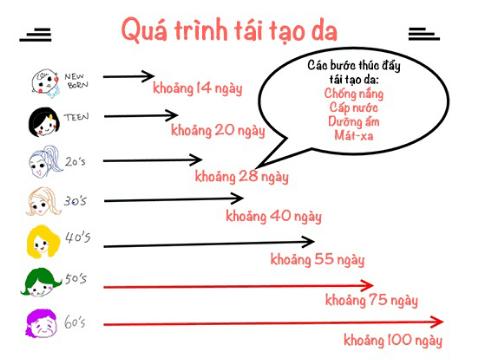 qua-trinh-tai-tao-da-thich-hop-voi-lieu-trinh-su-dung-tru-face-myphamnuskinvn